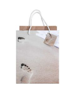 GIFTBAG SML FOOTPRINTS