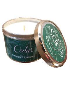 Cedars Of Lebanon Scented Scripture Candle Tin