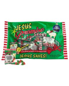 Jesus Christmas Scripture Candy Promise Seeds - Bag